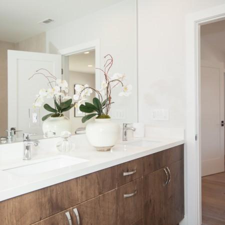 Flat Panel Vanity Cabinet